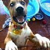 Smiley - 9/23/10 - Sally Crewe