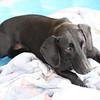 Rita - 10/19/2010 - Summer Huggins