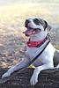 Lola - 08/18/2011 - Summer Huggins