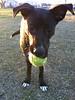 Zina - 02/14/2011 - BBBS