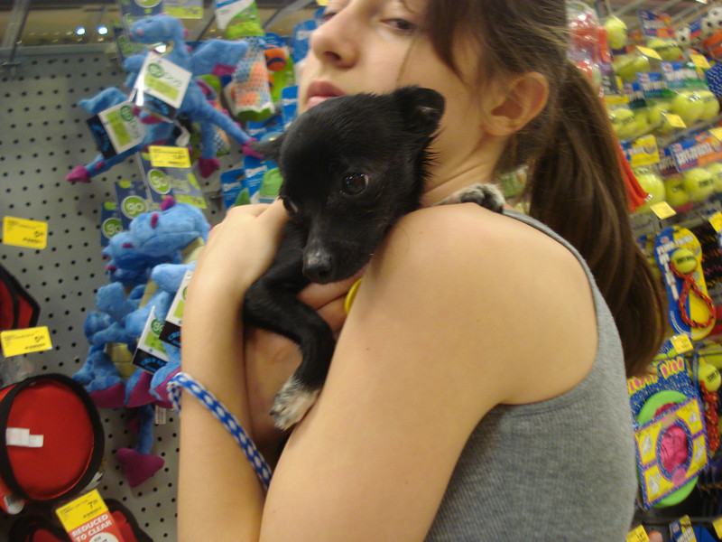 Oreo 5/15/2011