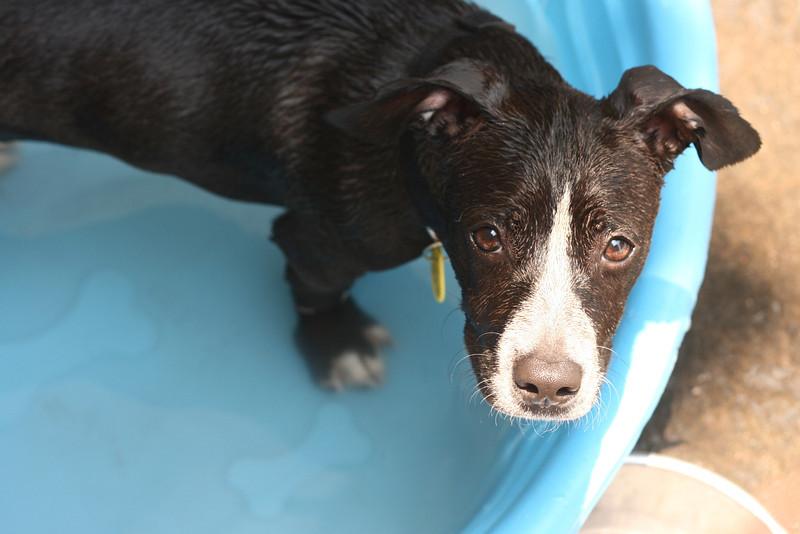 Jade - 06/07/2011 - Summer Huggins