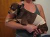 Simon - 10/25/10 - Becky Christenson