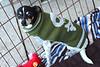 Wesley - 11/1/2011 - Summer Huggins