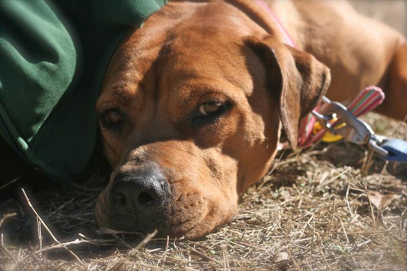 Winnie - 01/22/2011 - Summer Huggins