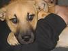 Jill - 12-11-11 - Victoria Brooks