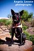 Zorro, 5/16/11, Angela Lozano