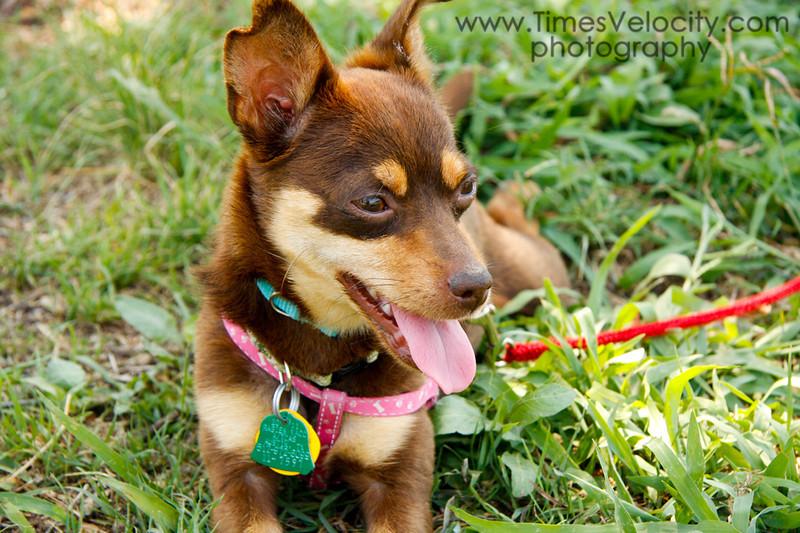 Phoebe - 05/28/2011 - Gabby Barrera