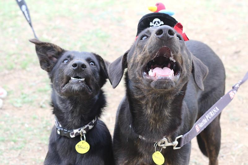 Stacie & Statner - 11/20/2011 - Summer Huggins