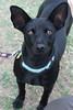 Mamacita - 11/20/2011 - Summer Huggins