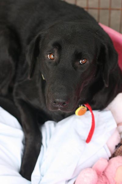 Sarah - 01/04/2011 - Summer Huggins
