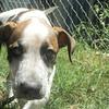 Spencer -- 04/23/2012 -- Summer Huggins