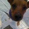 Heidi - 11/8/12 - Magelly Serrano