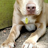Carol -- 05/01/2012 -- Summer Huggins