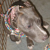Toni - 070612 - VictoriaBrooks