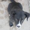 Rainey - 052412 -VictoriaBrooks