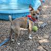 Reese-8-24-2012-Kelly Cavanaugh