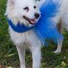 Missy - 04/08/12 - Jean Mattka
