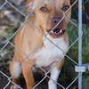 Benson - 04/17/12 - Julie Beach