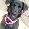 Stacie -- 02/16/2012 -- Summer Huggins