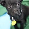 Zooey - 01/16/2012 - Meredith Maples