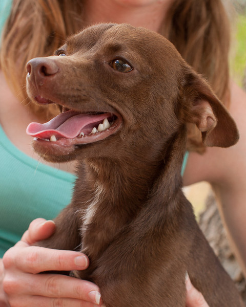 Choco - 3/11/12 - Laurie Weaver