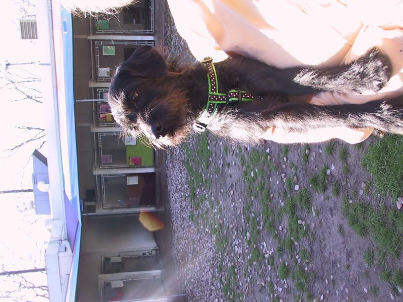 Flora Feb13, 2010 TrishaMcLaughlin