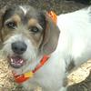 Griff -- 04/27/2012 -- Summer Huggins