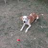 Serena-3/2/20013-Stacia Woodruff