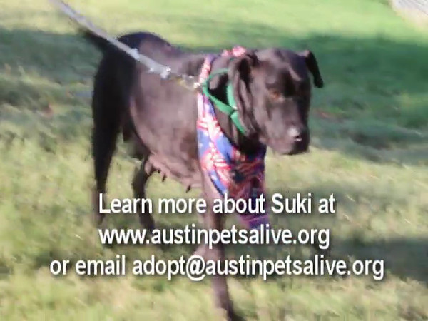 Suki video - 8/20/12 - Karen Hardwick
