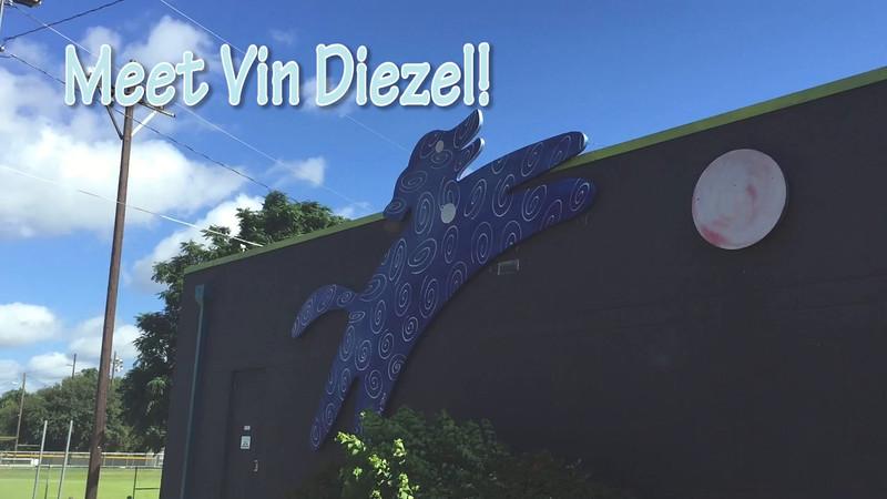 Meet Vin Diezel