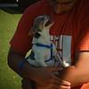 Toby 4/23/16/ Karla Hernandez