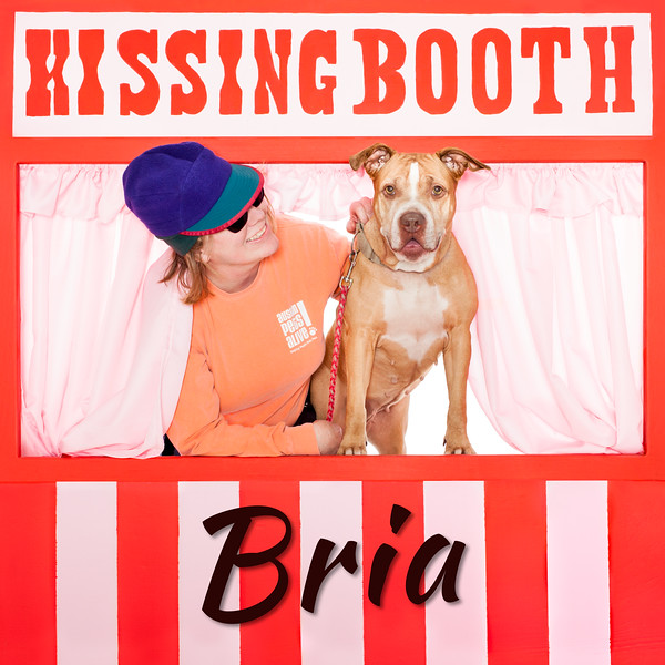 Bria - 3/8/16 - Mike Ryan