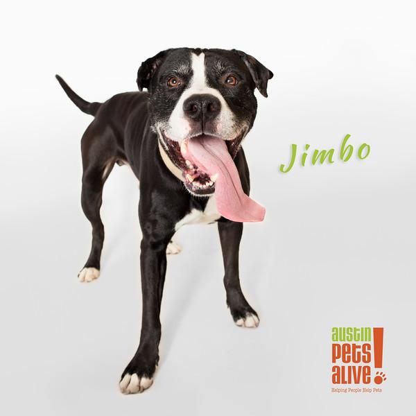 Jimbo - 2/24/16 - Mike Ryan