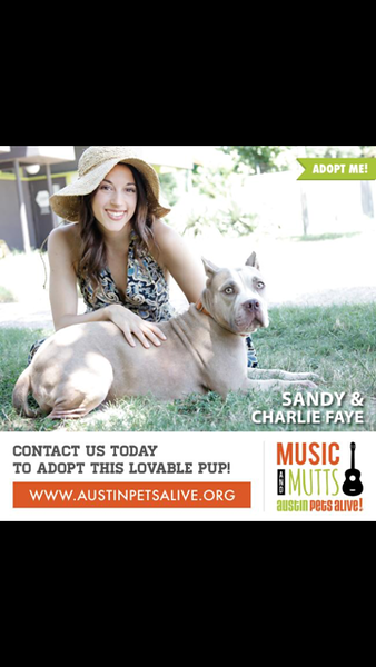 Sandy - 3/24/2015 - for adopter