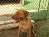 Bonnie_A498364_IMG_2011_cml