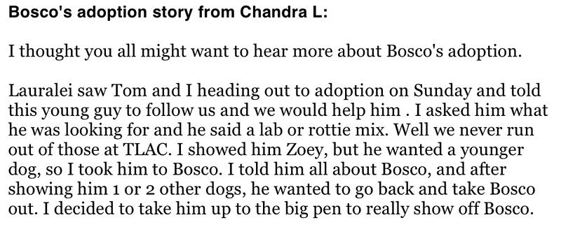 Bosco's adoption story part 1