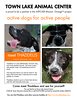 Print this flyer out to help Thaddeus find a new home.