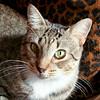 Jenny-10.08.10-Olivia Thompson