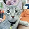Jiggy, 09112010, oliviathompson