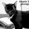Theo, 5/10/11, Angela Lozano