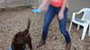 Scooby - 3/23/16 - Karen Hardwick