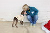 austin pets alive tarrytown dogs