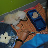 Parvo - Hunee gets IV meds (Ampicillin) injected into her catheter - shorey russell