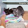 Cilla & Frances, Angela Lozano, 10/23/10