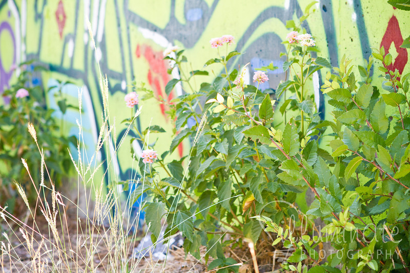 07 09 11 Outdoor Gallery Project-0252