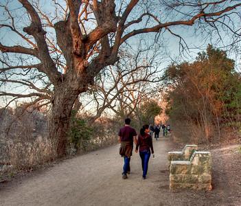 couple-walking-park