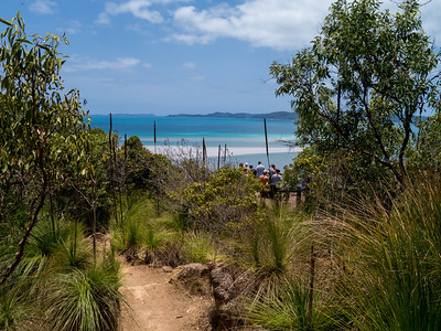 Walk to the view point over looking the North of Whitehaven Beach