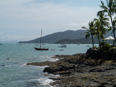 Boats at Airlie Beach