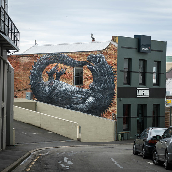 Dunedin Art